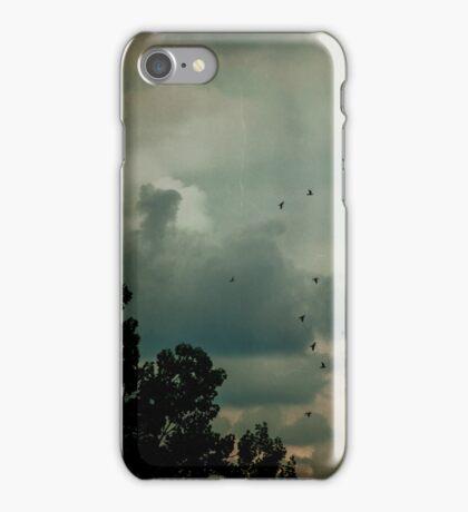Flying Higher iPhone Case/Skin