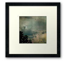 Flying Higher Framed Print