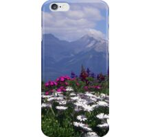 View from the Patio iPhone Case/Skin