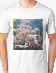 Baltimore Aquarium Series 7 T-Shirt