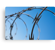 Barbed Wire Abstract Canvas Print