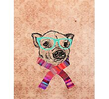 Funny Cute Pig Illustration Teal Hipster Glasses Photographic Print