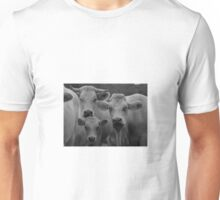 Cows in black and white Unisex T-Shirt