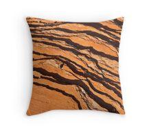Striated Rocks Throw Pillow