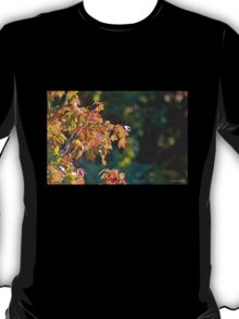 Autumn Light and Dark T-Shirt