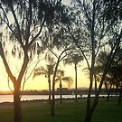 Woody Point Qld by Melissa Park