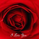 I Love You by Gloria Abbey