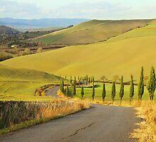 Tuscan Road by Emma Holmes