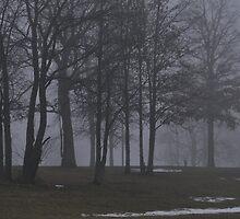 Giants in the Mist by mltrue