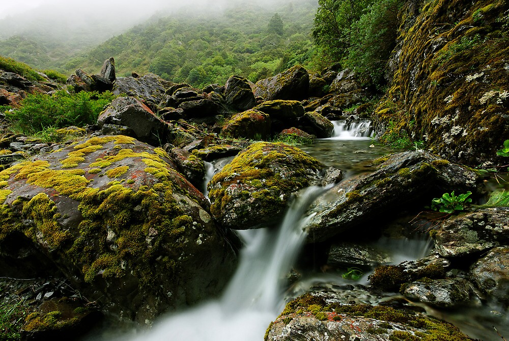 Return of the Cascades by Robert Mullner