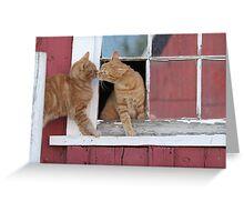 2 Orange Cats at the Barn Greeting Card