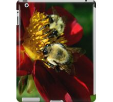 (Feeding on a flower) I'm falling through the universe again.. The love I feel as I fly endlessly through space.. iPad Case/Skin
