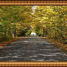 Autumn splendour #0 by marchello