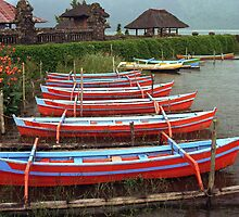 Bali Fishing Boats by Michael  Moss