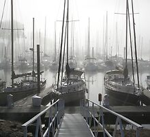 Dock on a Foggy Morning by livinginoz