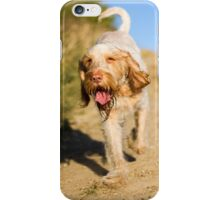 Orange & White Italian Spinone in Action iPhone Case/Skin