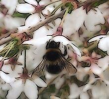 Busy Bee by DeneWest