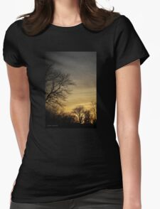 Last Light of Day Womens Fitted T-Shirt