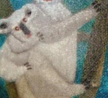 Australian Koalas Sticker
