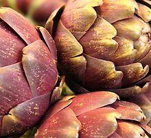 Artichoke Buds by Emma Holmes