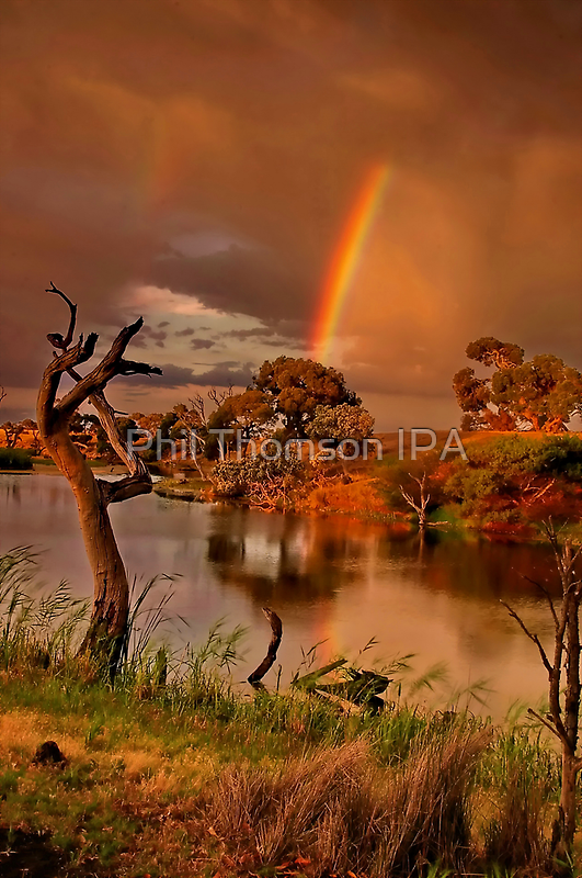 """""""The Covenant"""" by Phil Thomson IPA"""