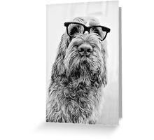 Brown Roan Italian Spinone wearing Glasses Greeting Card