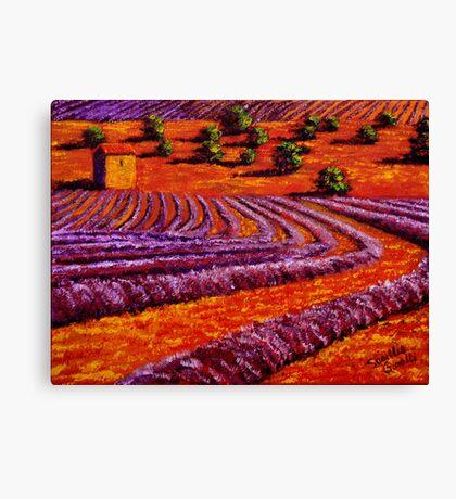 Provençal Country Lavender Canvas Print