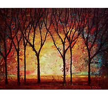 The Forest Dream Photographic Print