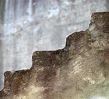 Step wall by Elizabeth McPhee