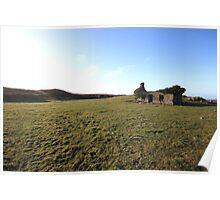 Fanore cottage ruins Poster
