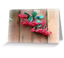 Berries Greeting Card