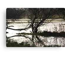 flood water  Canvas Print