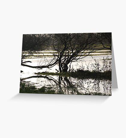 flood water  Greeting Card