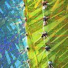Cactus Poetry by Susanne Van Hulst