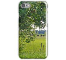 Country scene iPhone Case/Skin