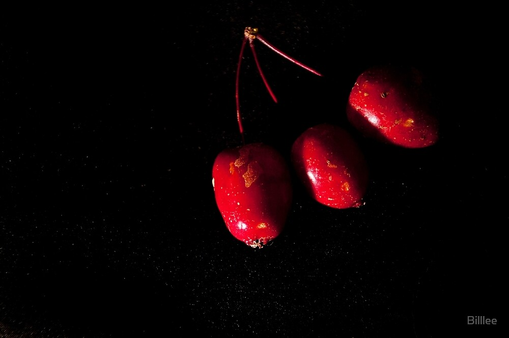 Less than perfect Crab Apples. by Billlee