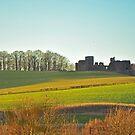 Goodridge Castle by Pic-Perfect