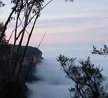 Early morning fog at Wentworth Falls, Blue Mountains by Keith Robinson