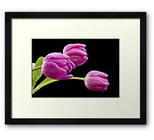 Flowers in The Rain Framed Print