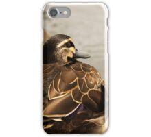 Windswept Duck iPhone Case/Skin