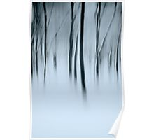 ghosts in the woods Poster