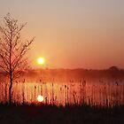 Misty sunrise on Corgar Lake. Co. Leitrim . Ireland by EUNAN SWEENEY
