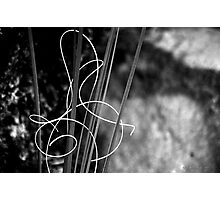 Signed With Love #2 Photographic Print