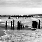Jetty at Fort Tilden by andytechie