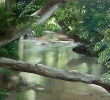 Wylie Creek by Jeff Jackson
