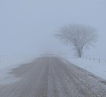 Road to Nowhere by lorilee