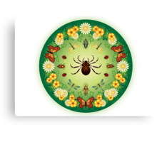 L'Aranja, the captivation of the spider's web Canvas Print
