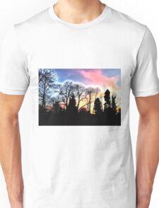 Dazzling Sunset Unisex T-Shirt