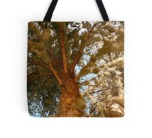 Mossy cypress tree Tote Bag