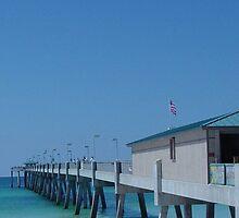 Ocean Pier by gern
